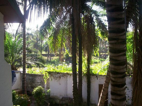 Badala Park: view from my balcony