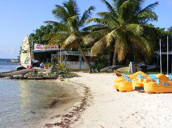 Sugar Beach Condo Resort: Best jet ski tours ever!