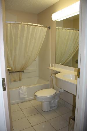 Microtel Inn & Suites by Wyndham Florence/Cincinnati Airport: Microtel bathroom