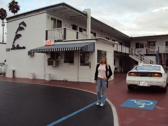 Dolphin Motel: outside view