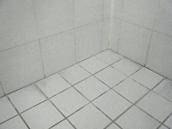 Boyne Island Motel & Villas: The shower AFTER management scrubbed clean.