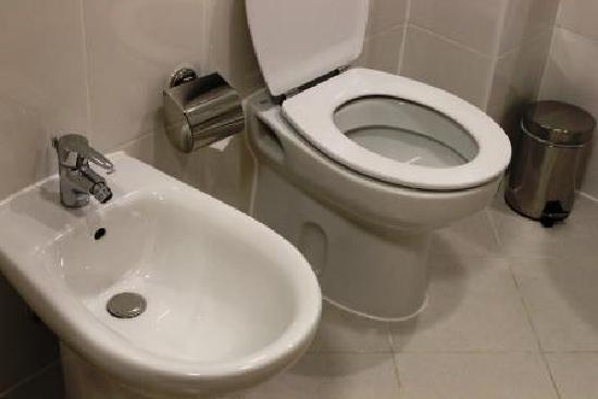 Premier Inn Dubai International Airport Hotel: toilet