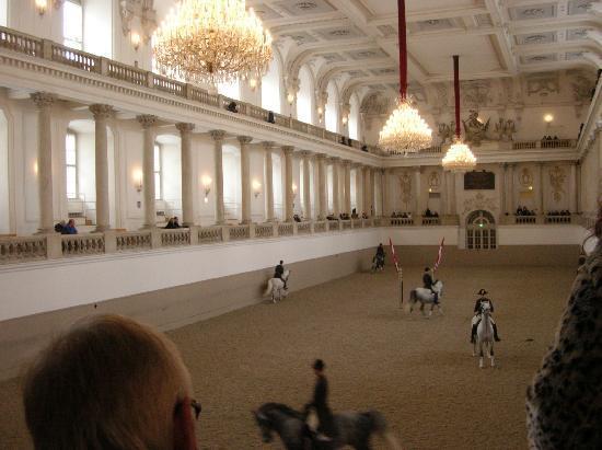 """Spanish Riding School : """"esercizi"""""""