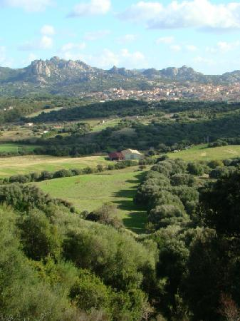 Il Vecchio Ginepro: View from the Agritusimo towards Arzachena