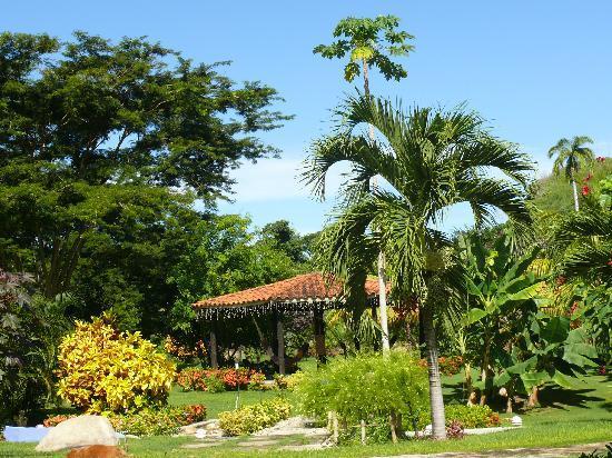 Hotel Posada La Bokaina: Garden