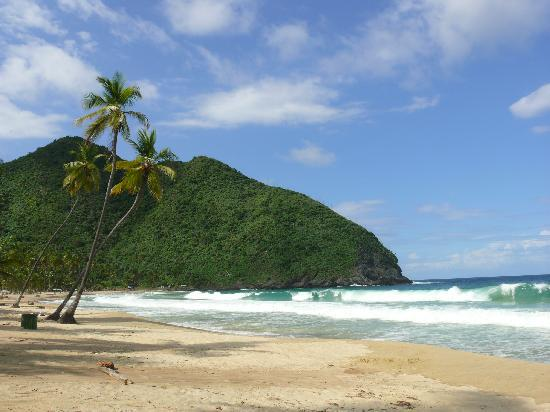 Hotel Posada La Bokaina: Playa Grande