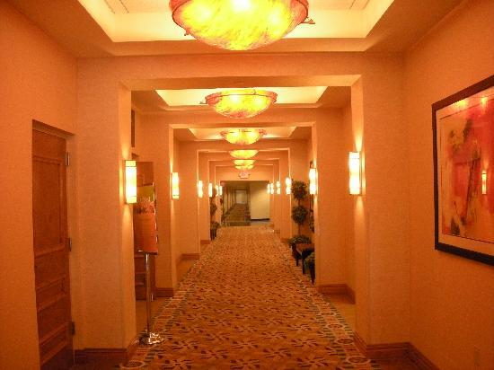 Holiday Inn South Plainfield - Piscataway : Hall