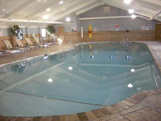 Holiday Inn South Plainfield - Piscataway: Pool