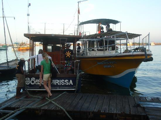 Mirissa Water Sports: Entrance to the boat - you go with the boat on your right hand side