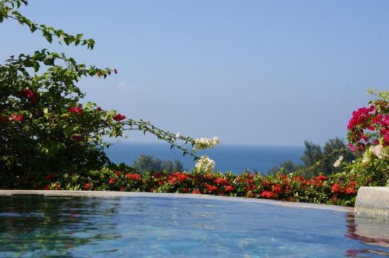 Pacific Club Resort : piscine