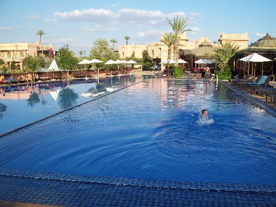 قرية بالميراي السكنية بمراكش: la superbe piscine