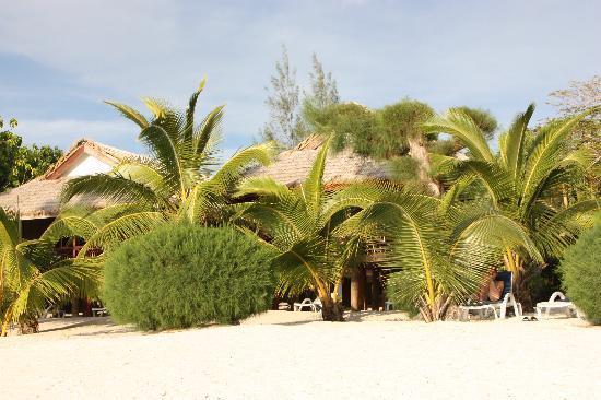 Raina Lagoon Villas: Am Strand spenden Palmen schatten