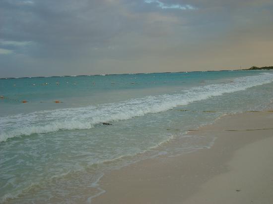 Catalonia Playa Maroma: La playa en el atardecer