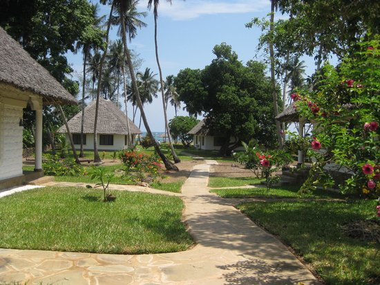 Simba + Oryx Beach Cottages: View of the Beach