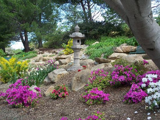 Vacaville, CA: andrew's park