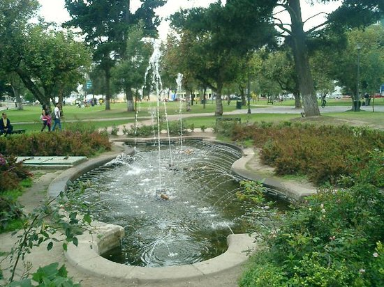Quito, Ecuador: Eared Doves enjoyed the fountains