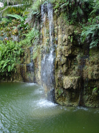 Homestead, Φλόριντα: One of the the water falls