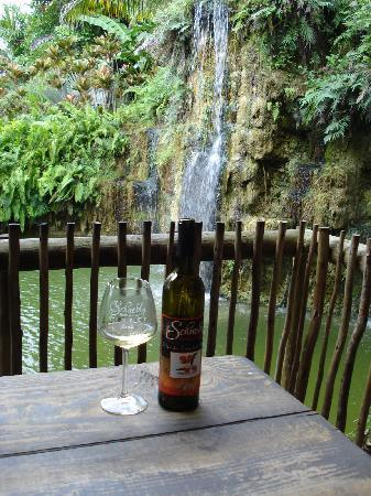 Schnebly Redland's Winery: relax
