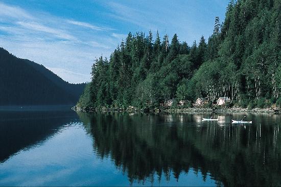 Clayoquot Wilderness Resort 사진