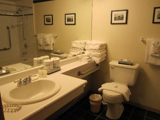 Washroom picture of whistler town plaza suites whistler for Washroom photo