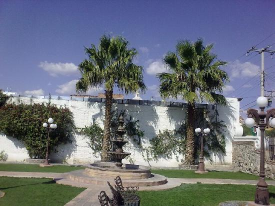 Posada de la Aldea: Palms