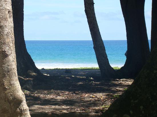 Radhanagar Beach : Crystal blue paradise!