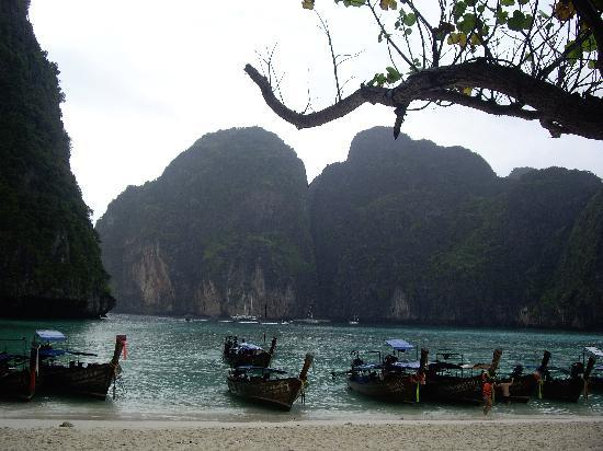 Phi Phi Arboreal Resort: Maya bay
