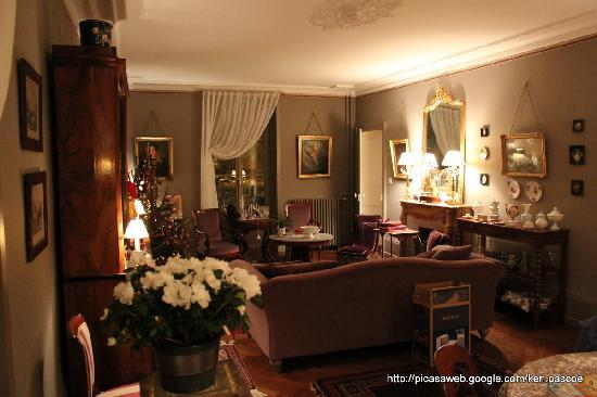 La Maison d'Hotes du Parc: The lounge is exquisite.