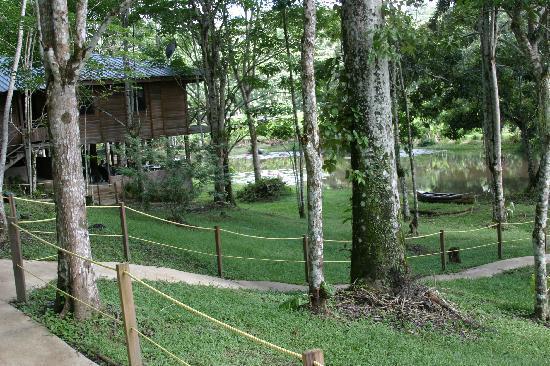 Talparo, Trinidad: Lapwing cottage