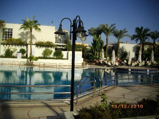 Piscine picture of mercure cairo le sphinx giza for Le jardin hotel mercure