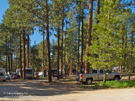 Kaibab Camper Village: The only RV campground on the north side of Grand Canyon with hookups.