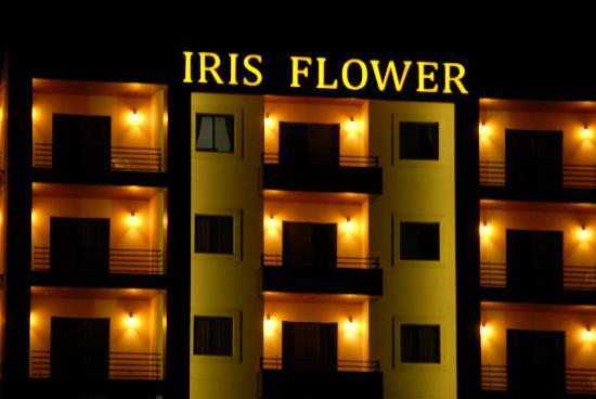 Iris Flower Hotel: Night Vision