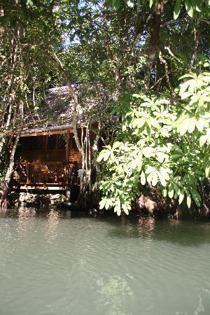 Hotel Finca Tatin : River side cabin
