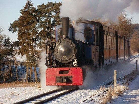 South Tynedale Railway: Santa Steam Special
