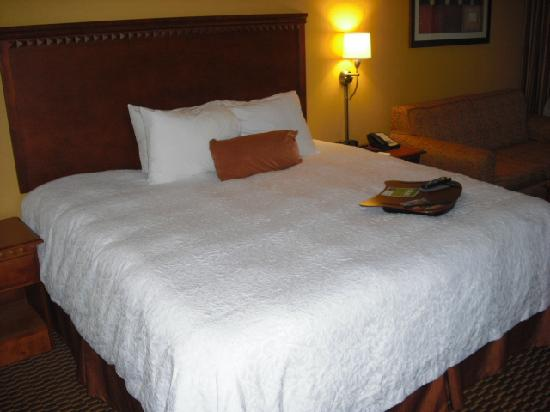 Hampton Inn Charleston - Southridge: King Size Bed