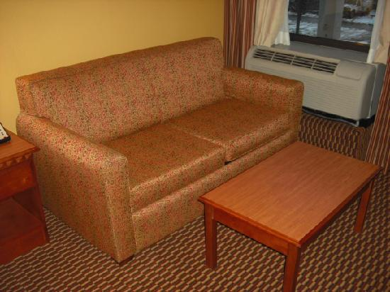 Hampton Inn Charleston - Southridge: Fold out couch