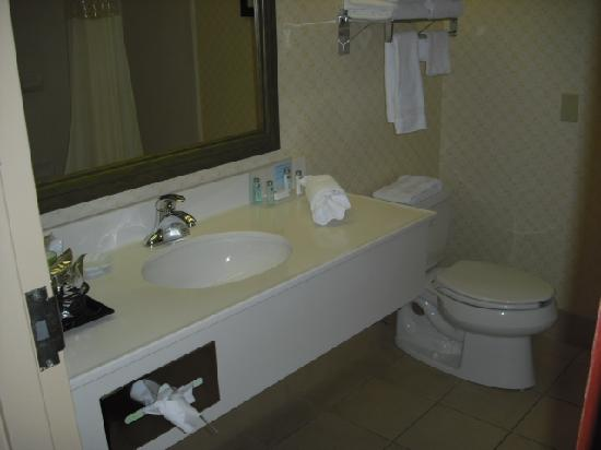 Hampton Inn Charleston - Southridge : Bathroom Vanity