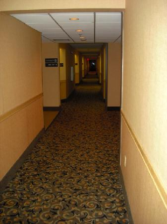Hampton Inn Charleston - Southridge: 2nd floor hallway