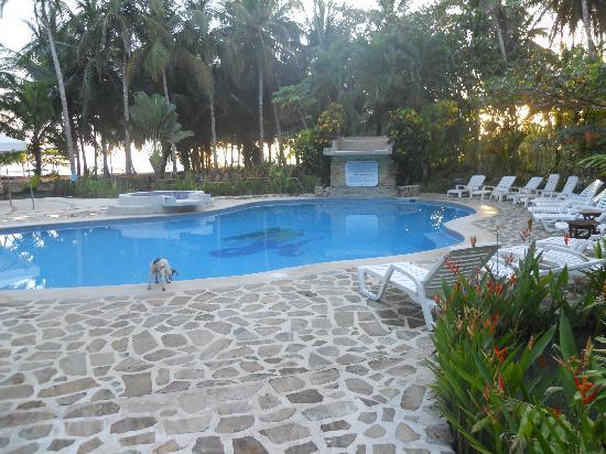 Hotel Playa Westfalia: The pool area & one of their ambassadors