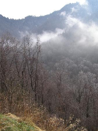 Smoky Cove Chalet and Cabin Rentals: Great Smokey Mountains.
