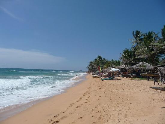 Kalla Bongo Lake Resort: Hikkaduwa Beach