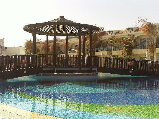 Al Bostan Hotel: bilde over svømmebassenget