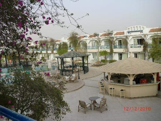 Al Bostan Hotel: bilde over poolbaren