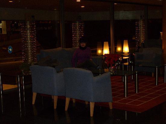 Golden Tulip Andorra Fenix Hotel: recepcion ( es mas grande, solo que en la foto no cabia mas)