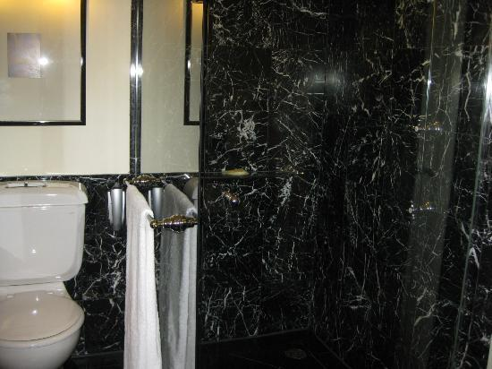 Sheraton on the Park, Sydney: Shower