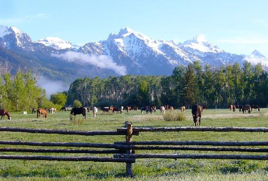 Teton Village, WY: View of Teton Mountains from Ranch