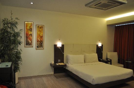 Residency Hotel Andheri: Room