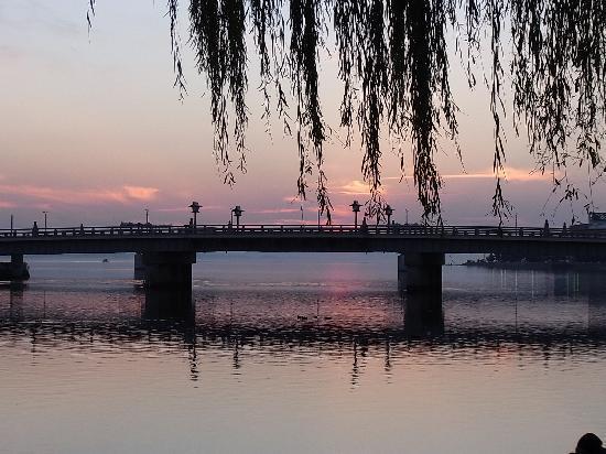 Matsue, Japón: 柳がある通りからの松江大橋
