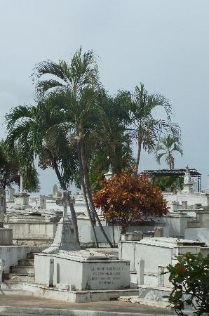 Santa Ifigenia Cemetery: Tombs