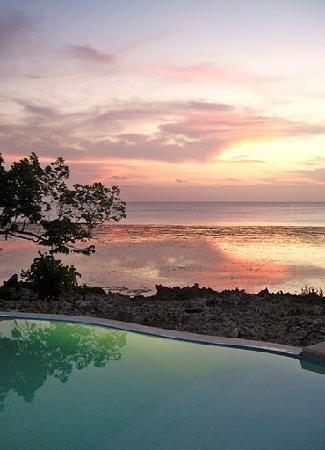 Kizimkazi, Τανζανία: Vistas desde la piscina
